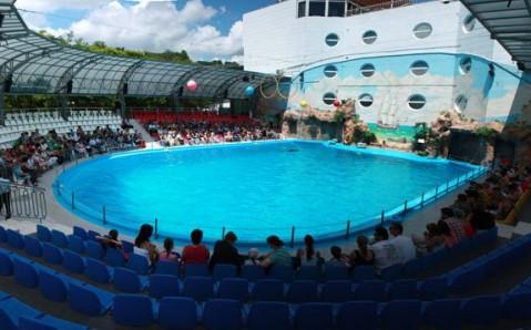 Odesa Dolphinarium
